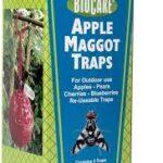 BioCare® – Apple Maggot Traps