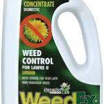 Superior® – Weedex for lawns